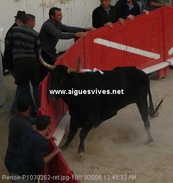 http://www.aiguesvives.fr/local/cache-vignettes/L350xH370/Renoir-P1030262-ret_trophee_as_2008-50731.jpg